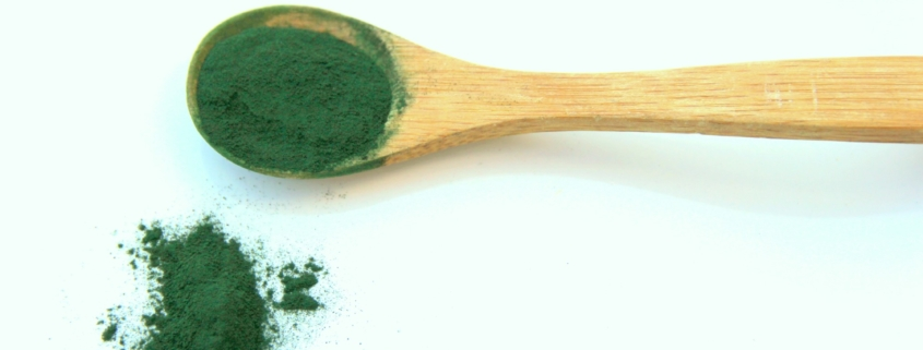 Adding Fresh Spirulina to Your Diet